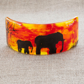 Curved Elephant Picture