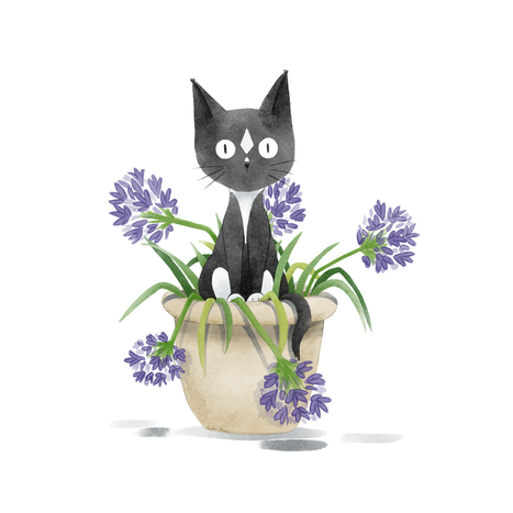 Bindi_In_Agapanthus.png