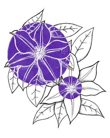 Day 5 Clematis.jpg