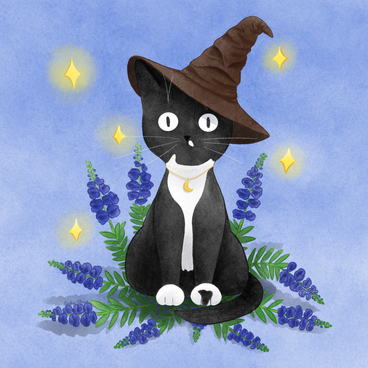 Kitty_In_Sorting_Hat 2.png