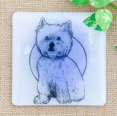 Animal Coasters3.jpg