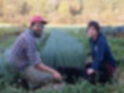 Dharma Farmers