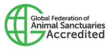GFAS Vertical Accredited.png