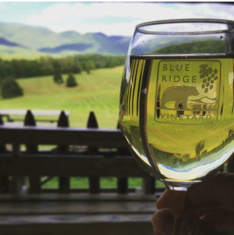 Blue Ridge Vineyard wine glass