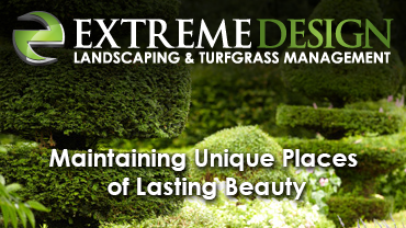 Extreme Design Landscaping
