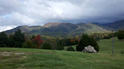 Blue Ridge Vineyard view 1
