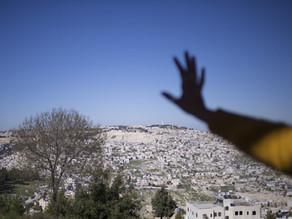 Grassroots Jerusalem: A Platform for Palestinian Self-empowerment ForumZDF