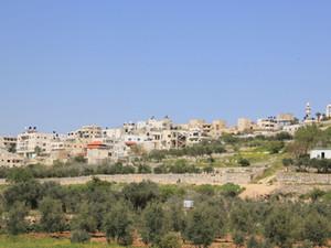 Al-Jib