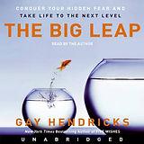 the big leap.jpeg
