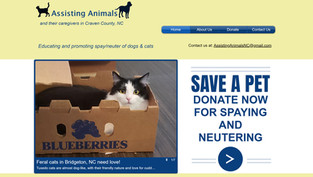 Assissting Animals