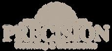 precision logo B3A89A-01.png