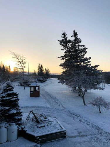 winter scene2 RO.jpg