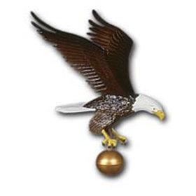 """12"""" Custom Color Eagle"""