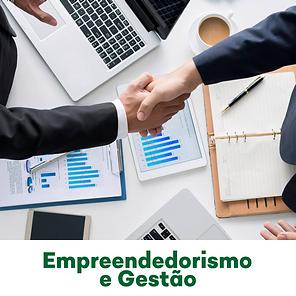 Empreendedorismo e gestão.png