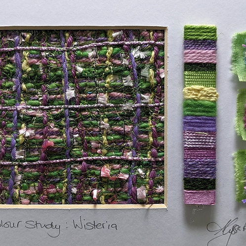 Colour Study:Wisteria