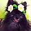 Thumbnail: Pet Spring Flower Crown (XS-XL) Any Colors and Sizes