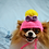 Thumbnail: ANY Sizes/Colors Pet Messy Bun Bow Hat Beanie (XS-XL) Pony Tail