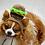 Thumbnail: Any Colors (XS-XL) Pet Hamburger Beanie Hat Cheeseburger Burger