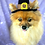 Thumbnail: Pet Pilgrim Hat (XS-XL)