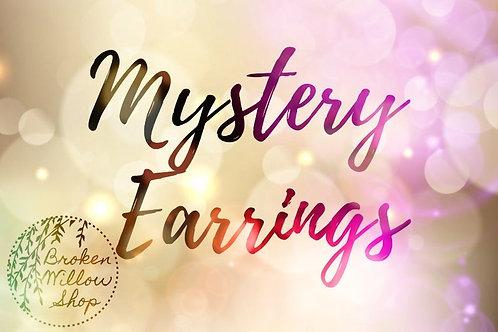 Mystery Earrings Faux Leather Earrings