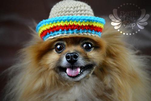 Pet Sombrero Hat (XS-XL)