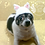 Thumbnail: Pet Kitty Cat Beanie (XS-XL)