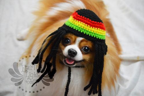 Pet Rasta Hat Beanie (XS-XL) Any Colors Rastafarian