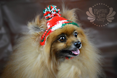 Back to listings Pet Christmas Spirit Beanie (XS-XL)