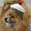 Thumbnail: Pet Cupcake Beanie (XS-XL) Any Colors