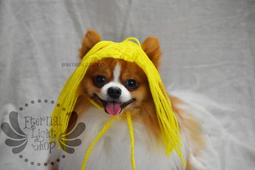Pet Wig Beanie (XS-XL) Any Colors Crochet Hat