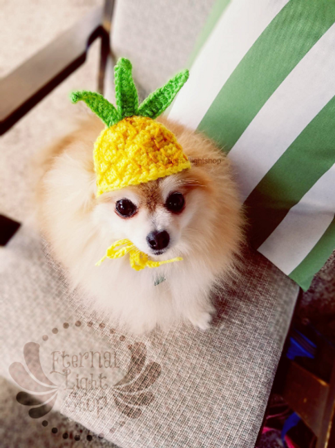 Pet Pineapple Hat Beanie (XS-XL)