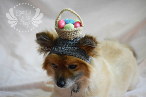 Pet Easter Basket Beanie (XS-XL)