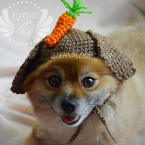 Pet Carrot Bunny Beanie (XS-XL)