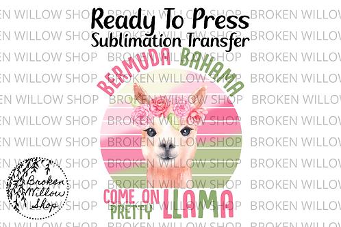 Bahama Llama Ready To Press Sublimation Transfer