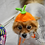 Thumbnail: Pet Pumpkin Hat Beanie (XS-XL) Any Colors