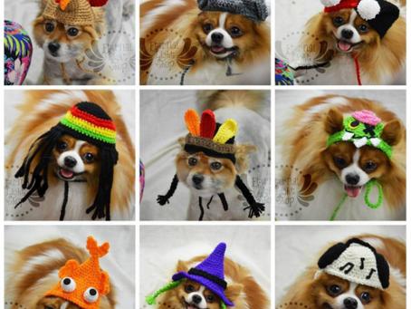 23 New Pet Hats!