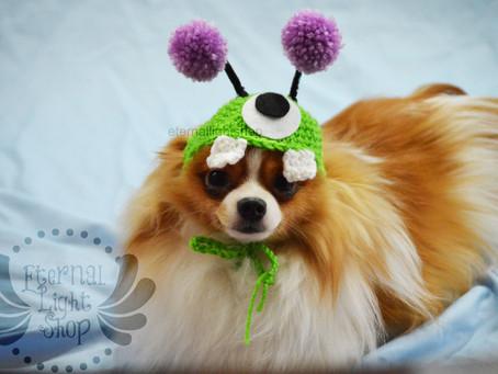 ANY Sizes/Colors Pet Alien Hat Beanie (XS-XL) Monster