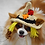 Thumbnail: ANY COLORs Pet Scare Crow Hat (XS-XL)