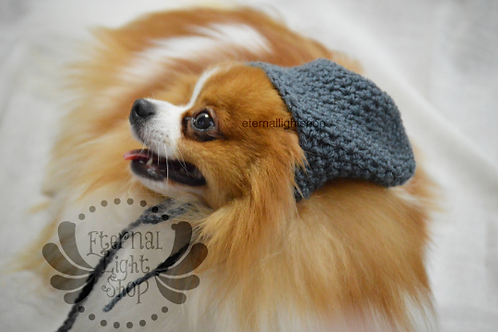 Pet Slouchy Hat Beanie (XS-XL) Any Colors