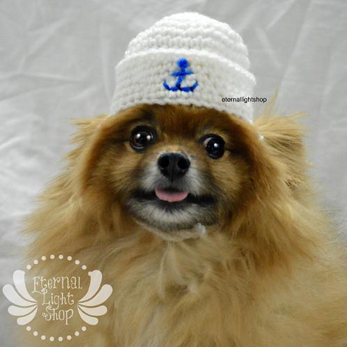 Pet Sailor Hat (XS-XL)