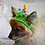 Thumbnail: Pet Easter Chicks Beanie (XS-XL)