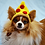 Thumbnail: ANY Sizes/Colors Pet Pizza Slice Hat Beanie (XS-XL)