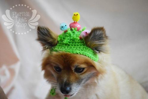 Pet Easter Chicks Beanie (XS-XL)