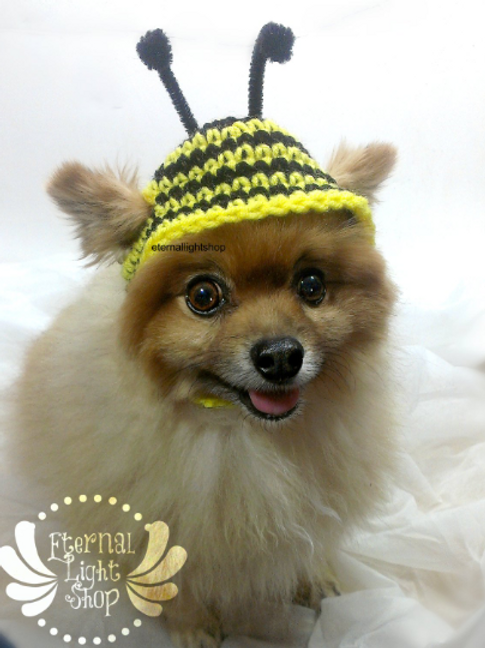 Pet Bumble Bee Beanie (XS-XL)