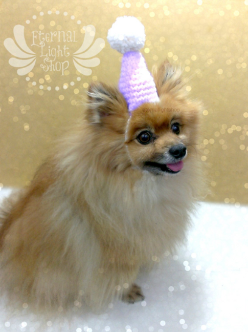 Party Pet Hat ANY COLORS ONESIZE