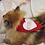 Thumbnail: Pet Valentine's STUD Bandana (XXS-XXL)
