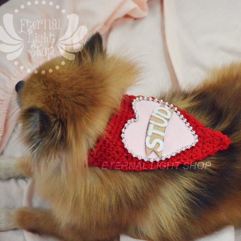 Pet Valentine's STUD Bandana (XXS-XXL)