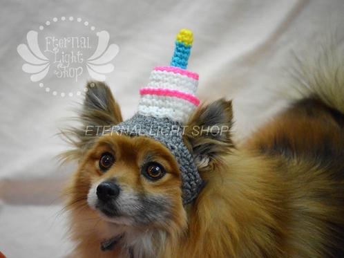 Pet Birthday Cake Beanie (XS-XL) Any Colors