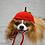 Thumbnail: Pet Apple Hat Beanie (XS-XL) Any Colors