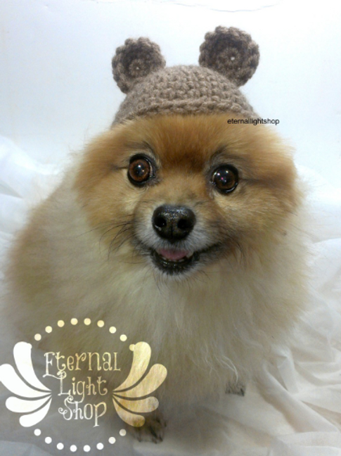 Pet Bear Beanie (XS-XL)